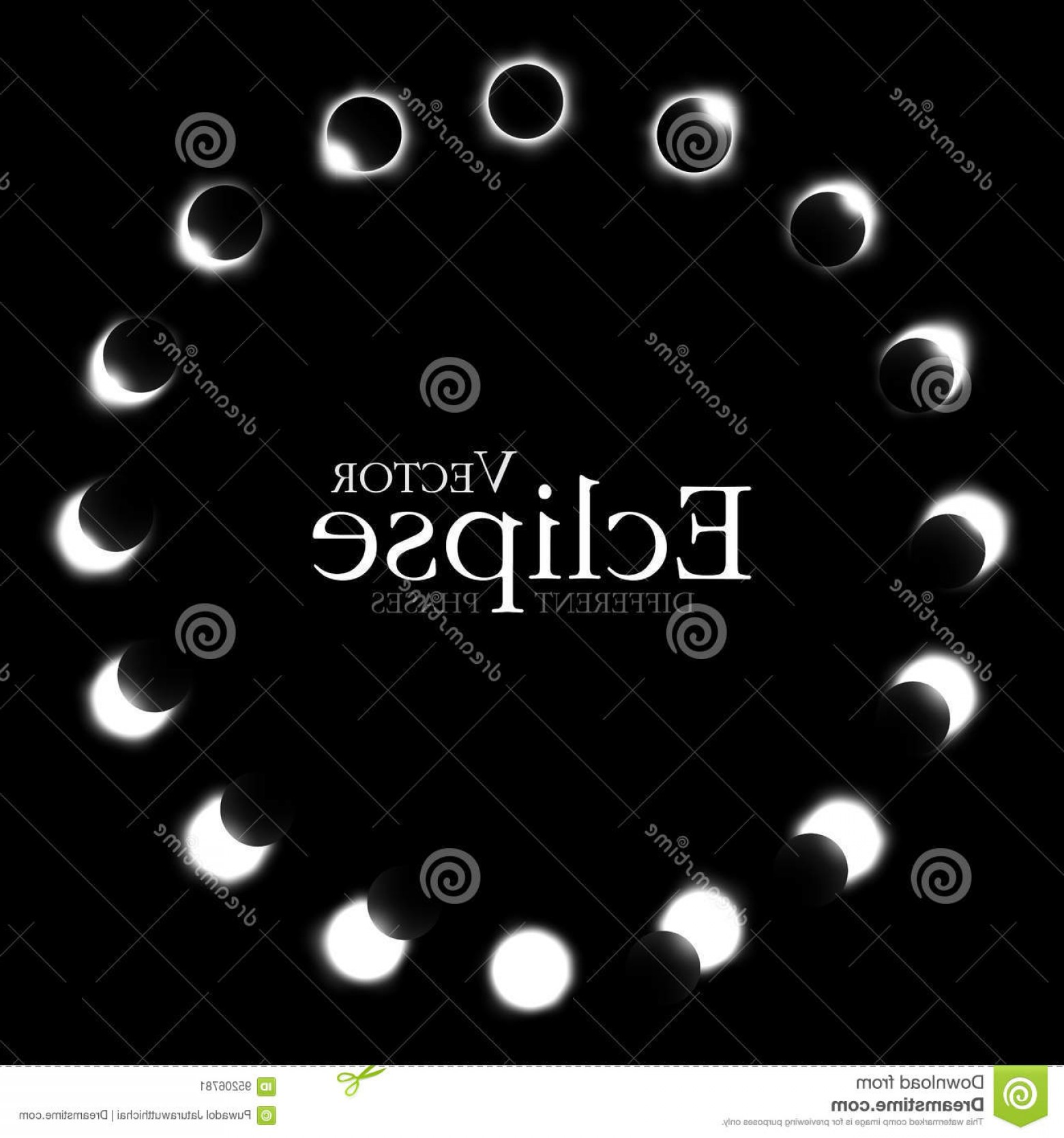 Whitew Eclipse Vector: Stock Illustration Different Phases Solar Lunar Eclipse Vector Image