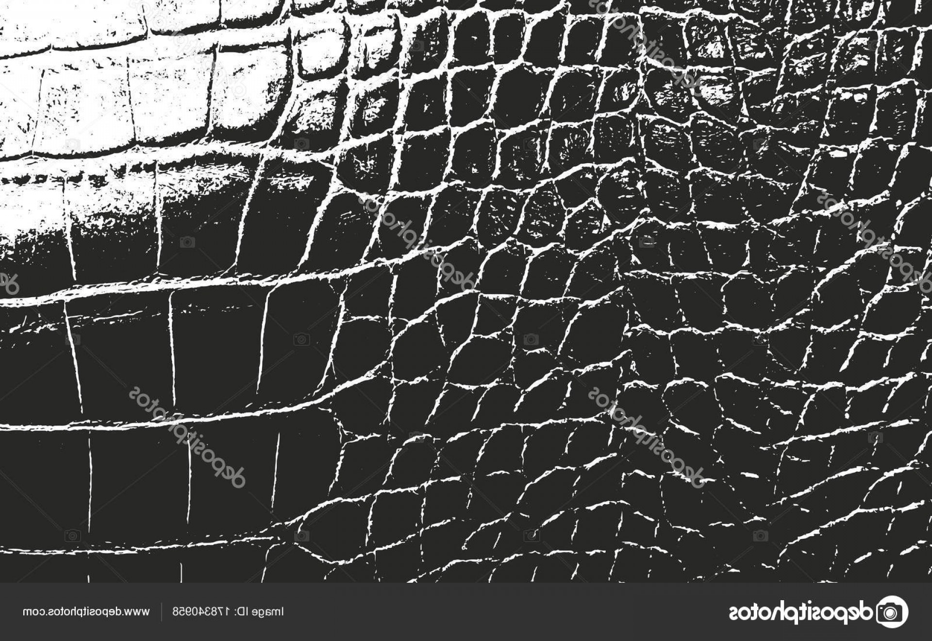 Alligator Skin Texture Vector: Stock Illustration Distressed Overlay Animal Skin Texture