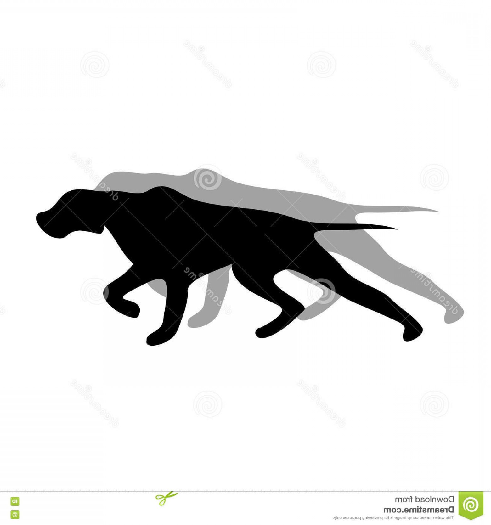 Pointer Dog Vector: Stock Illustration English Pointer Dog Black Silhouette Vector Illustration Image