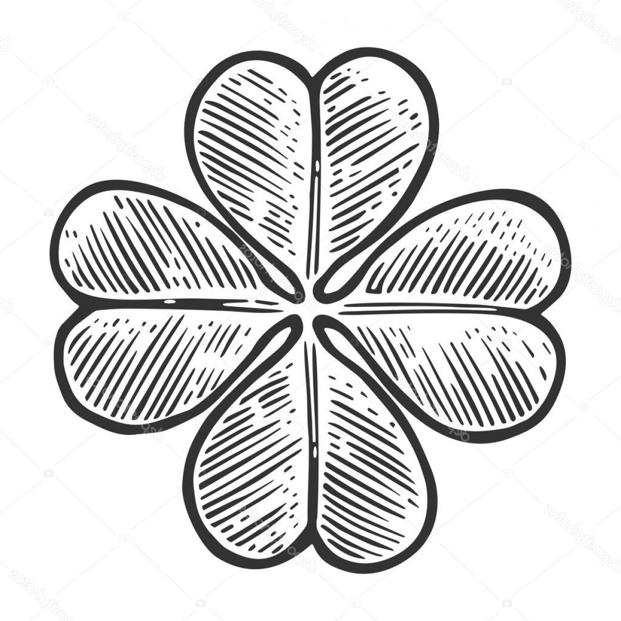 Four Leaf Clover Vector Art Black And White: Stock Illustration Good Luck Four Leaf Clover