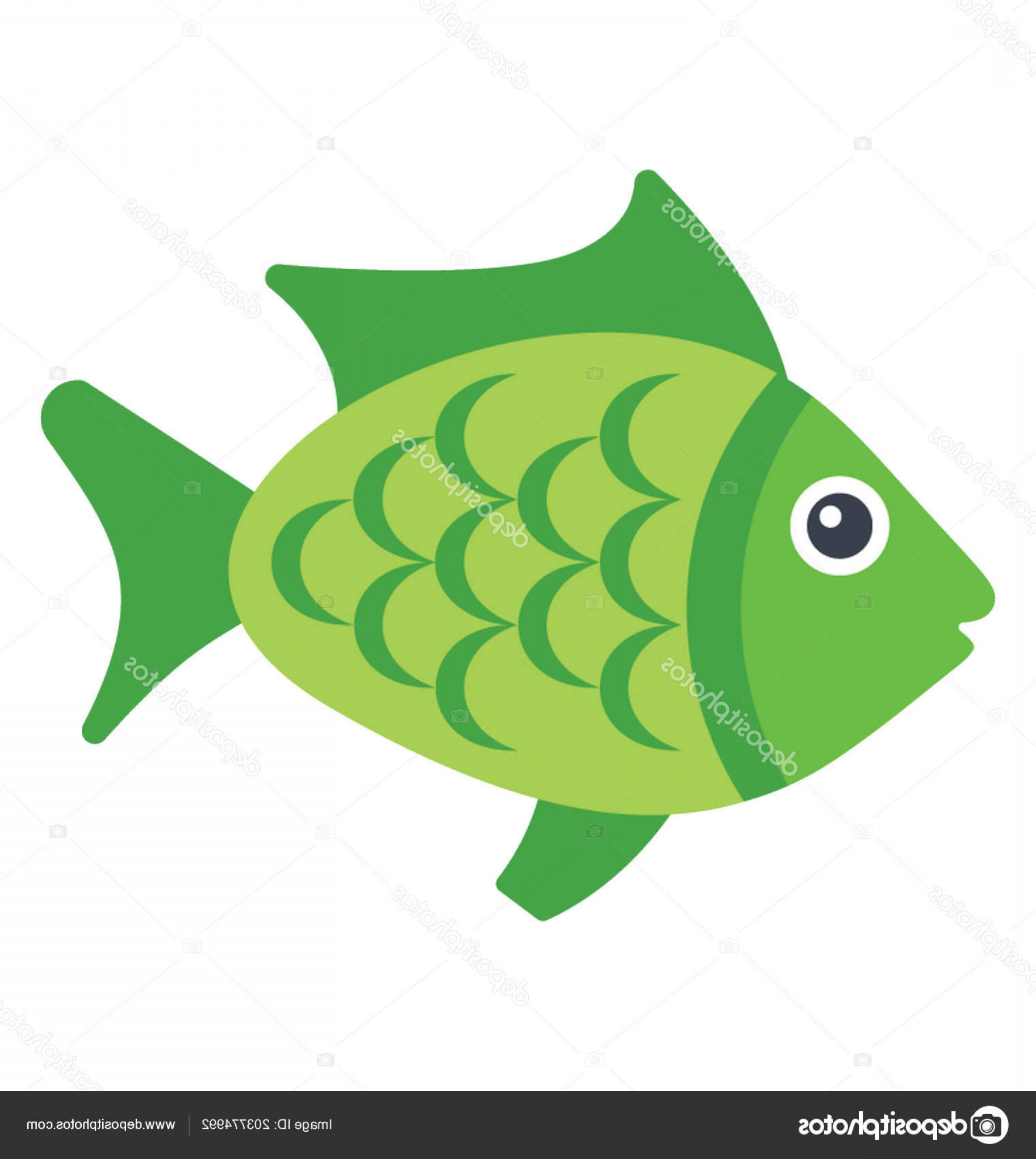 Mahi Mahi Outline Vector Images: Stock Illustration Green Colored Fish Belong Dolphin