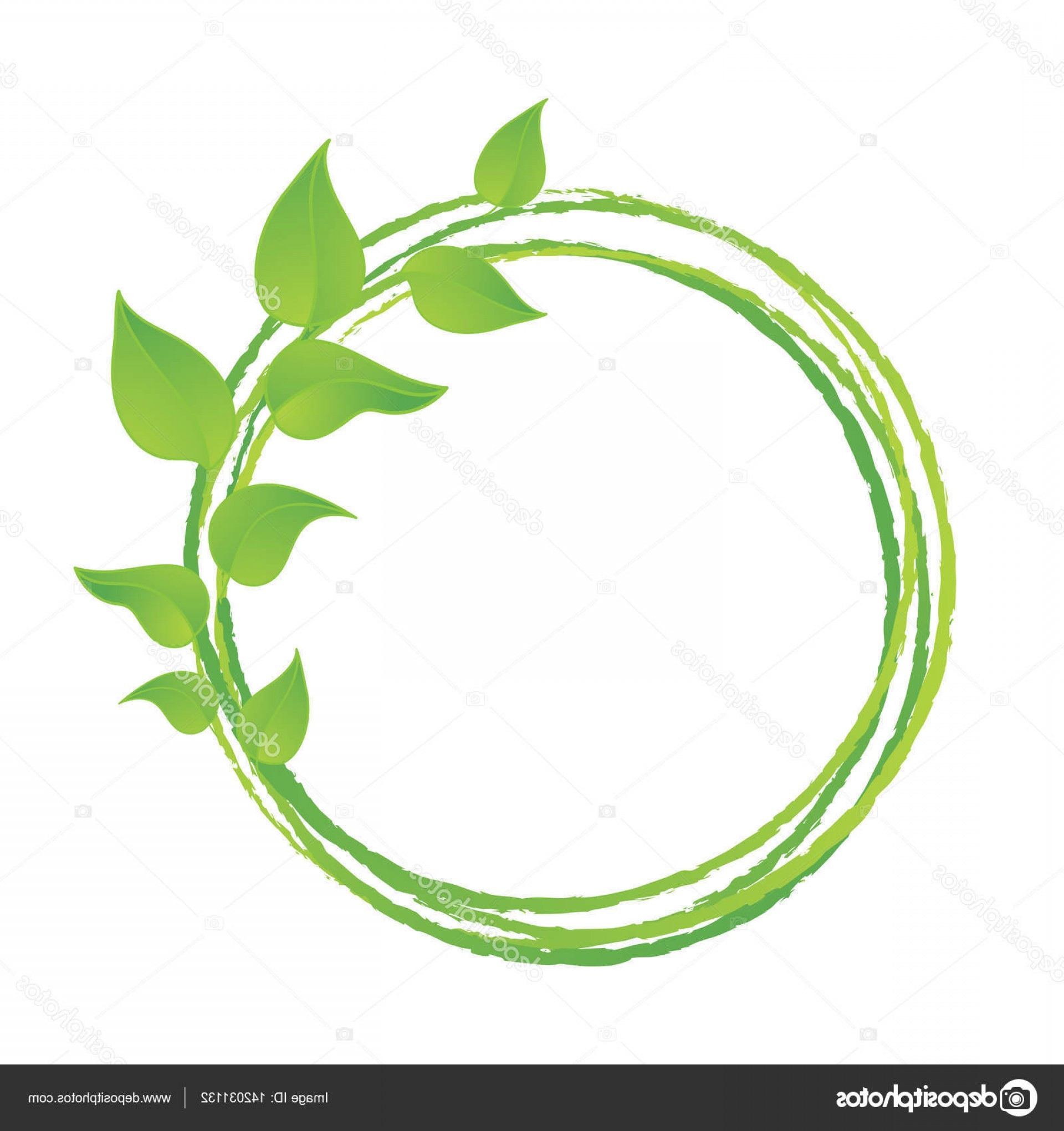 Vector Leaf Graphicd: Stock Illustration Green Leaves Or Leaf Graphic