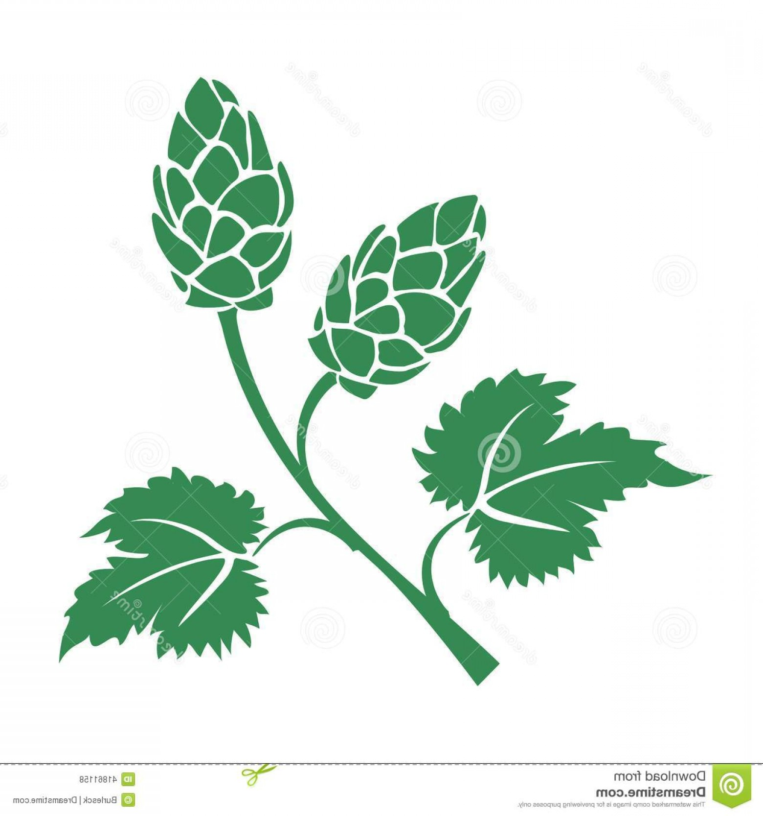 Hops Vector Art: Stock Illustration Green Vector Hops Icon Silhouette Leaves Cone Like Flowers Used Brewing Industry To Add Bitter Taste To Beer Image