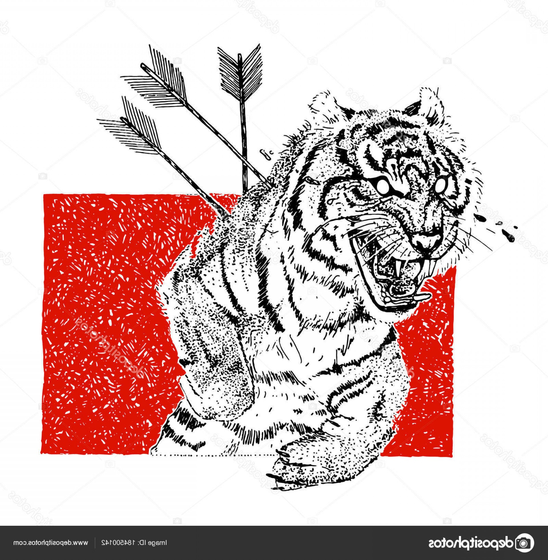Vector Boho Arrow Strength: Stock Illustration Hand Drawn Aggressive Tiger Arrows