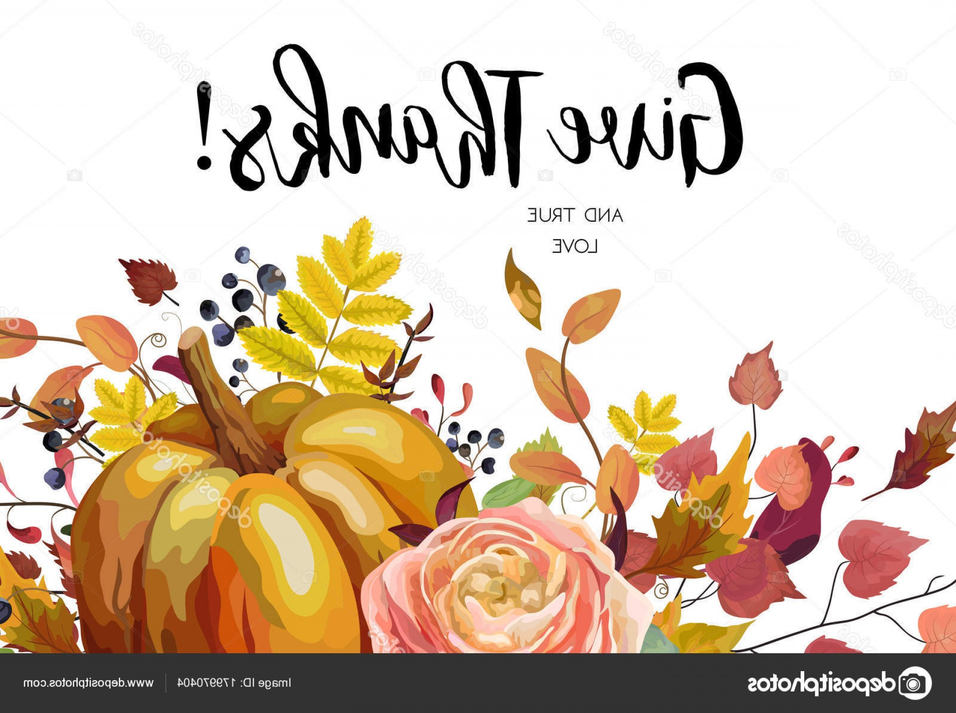 Thanksgiving Border Vector: Stock Illustration Happy Thanksgiving Vector Floral Watercolor