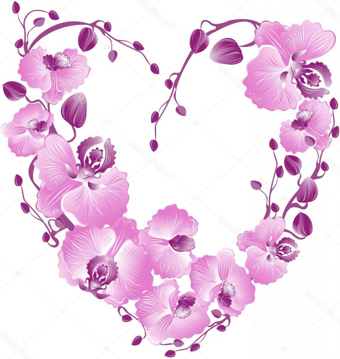 Purple Orchid Vector: Stock Illustration Heart From Purple Orchid Vector