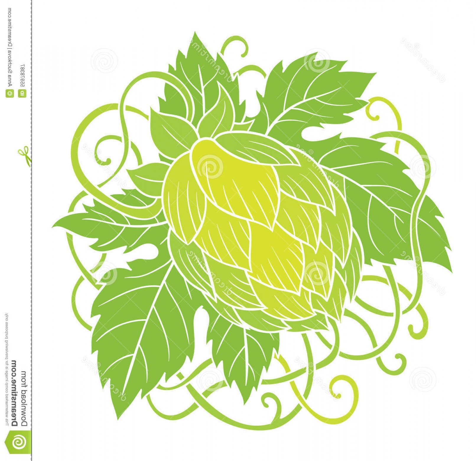 Beer Hops Vector: Stock Illustration Hops Vector Visual Graphic Icons Design Logos Ideal Beer Stout Ale Lager Bitter Labels Packaging Image