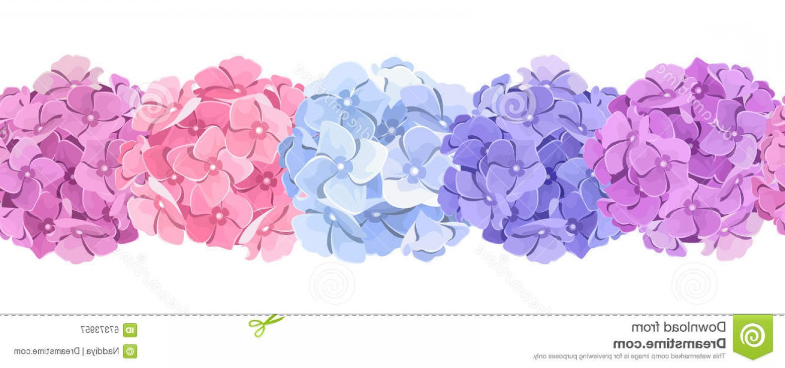 Hydrangea Vector Graphics: Stock Illustration Horizontal Seamless Background Pink Blue Purple Hydrangea Flowers Vector Illustration Image