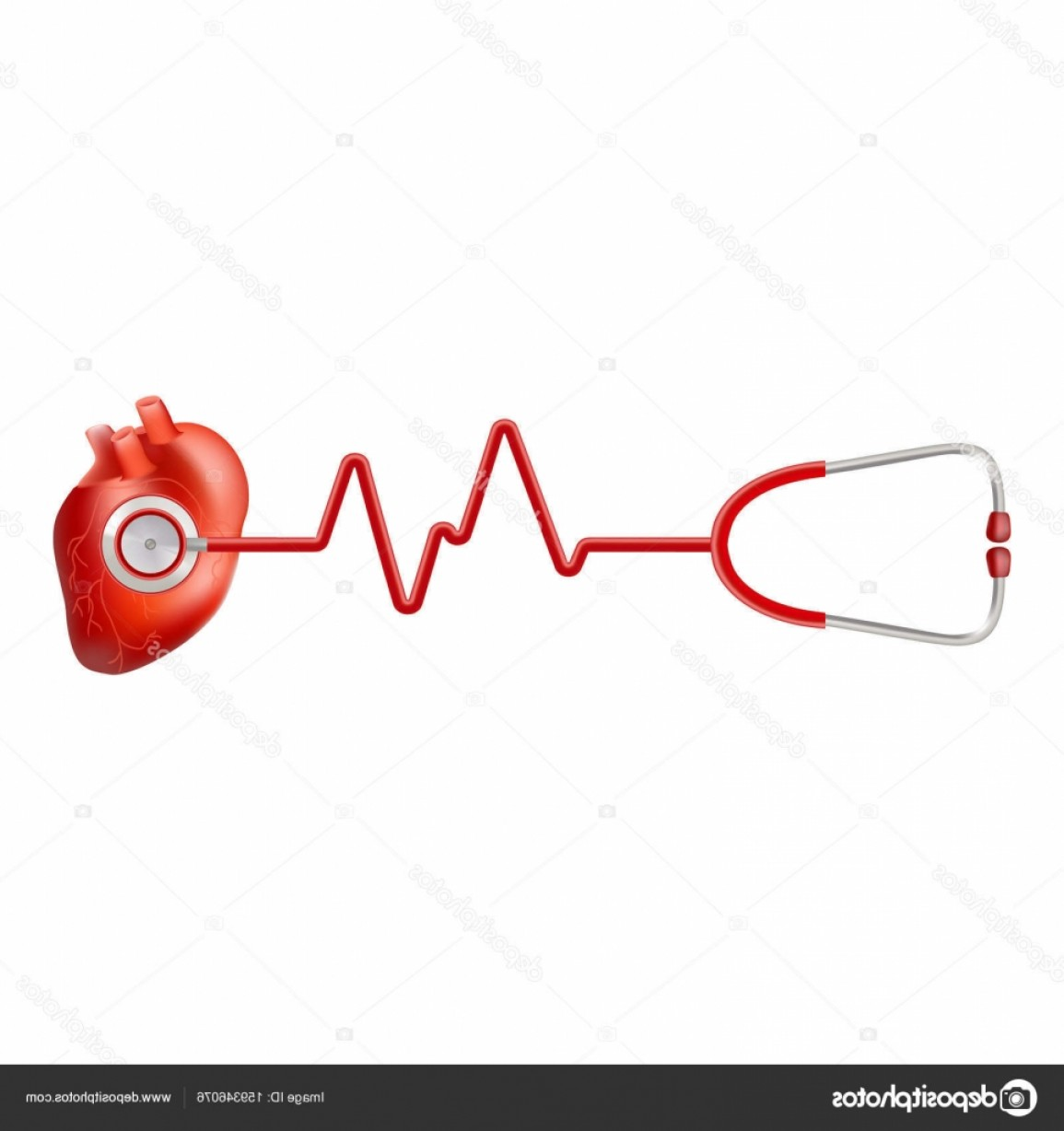 Heart Stethoscope With EKG Lines Vector: Stock Illustration Human Heart And Heart Beat