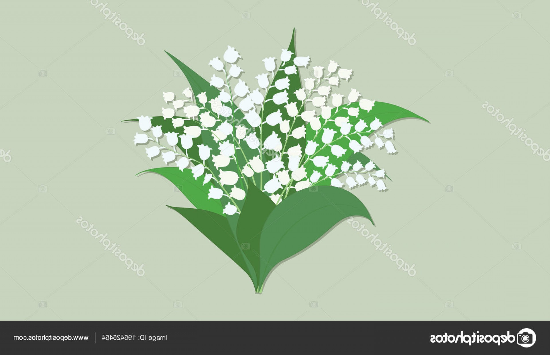 Lily Vector Art: Stock Illustration Lily Of The Valley Bouquet