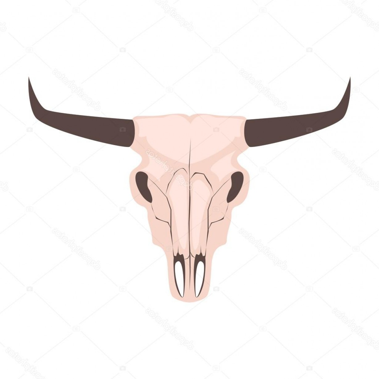 Longhorn Skull Vector: Stock Illustration Longhorn Cow Skull Head Vector