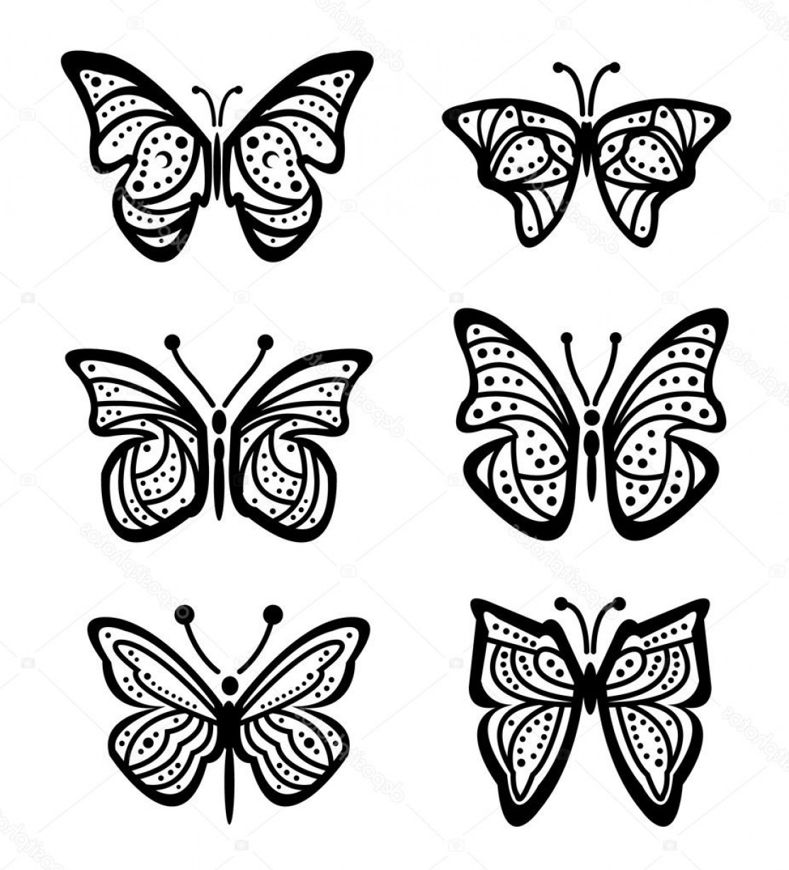 Butterly Vector: Stock Illustration Lots Of Different Butterfly Vector