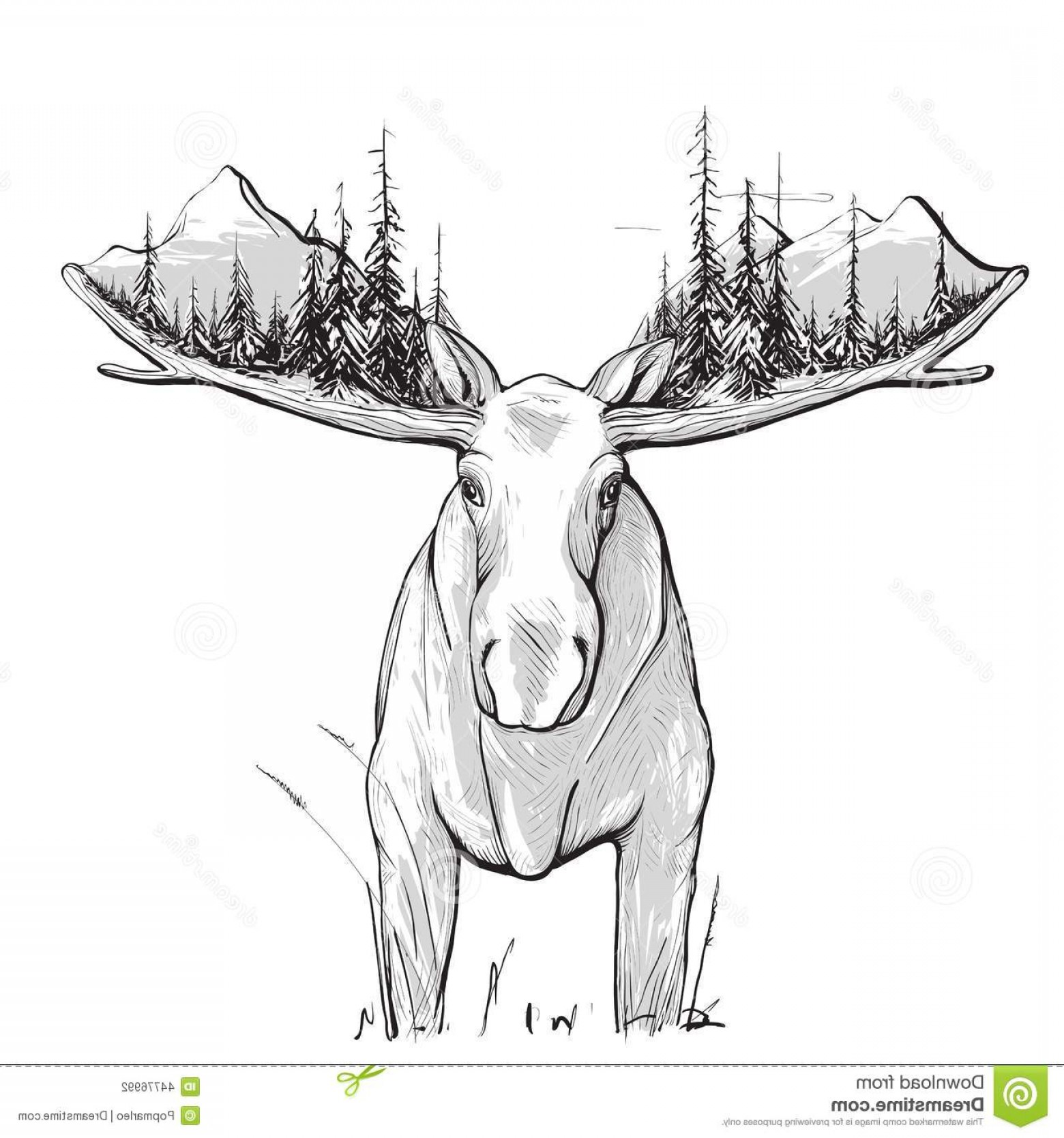 Alaska Moose Vectors: Stock Illustration Moose Forest Mountains Illustration Animal Nature Drawing Has White Undercoat Vector Eps Image