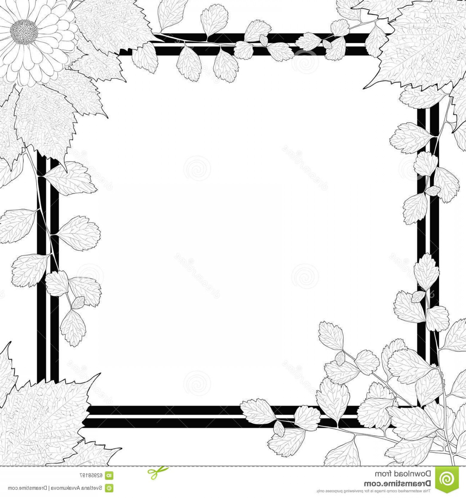 Square Black Vector Border Frame: Stock Illustration Nature Frame Black White Branches Leaves Flower Hand Drawn Light Background Square Border Vector Illustration Image