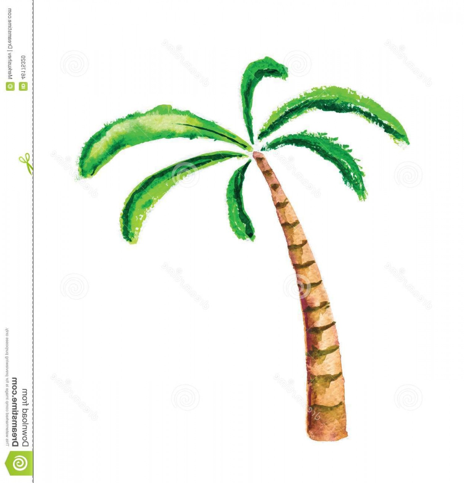 Watercolor Palm Tree Vector: Stock Illustration Palm Tree Watercolour Vector Illustration Isolated Image
