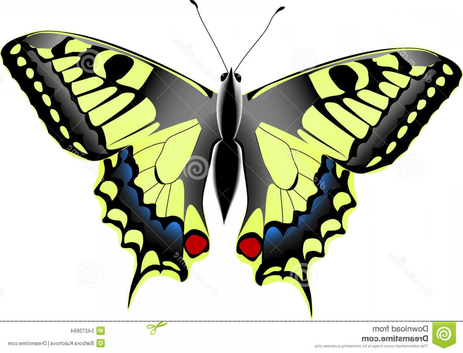 Real Butterfly Vector: Stock Illustration Papilio Machaon Look Like Real Image