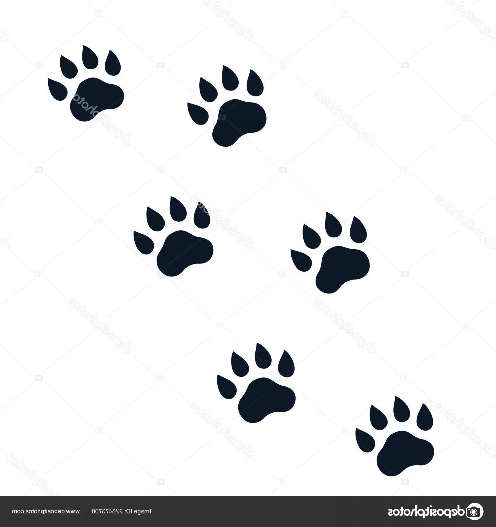 Footprint Vector EPS: Stock Illustration Paw Footprints On White Vector