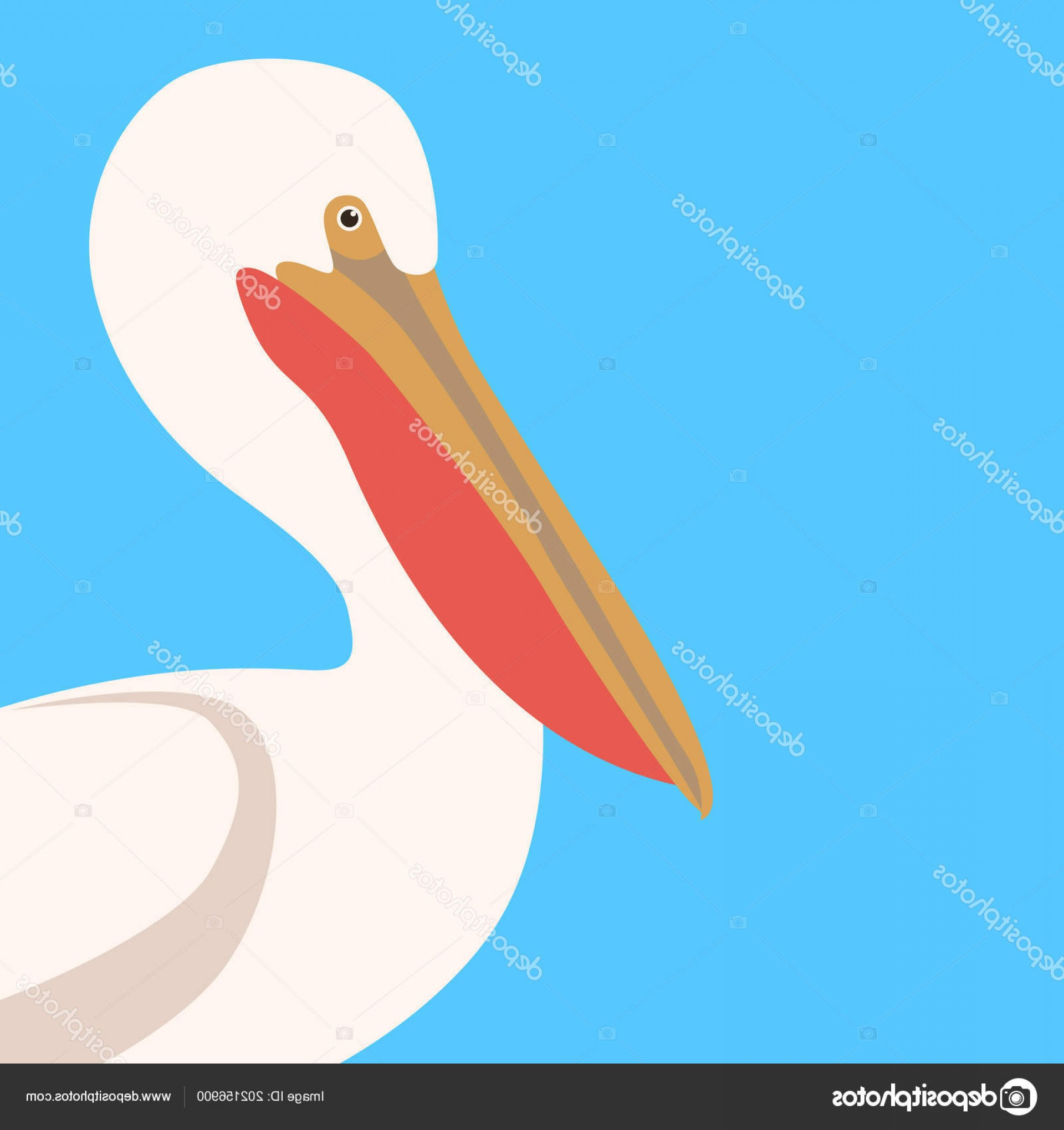 Pelican Vector Wings: Stock Illustration Pelican Head Profile Side Vector