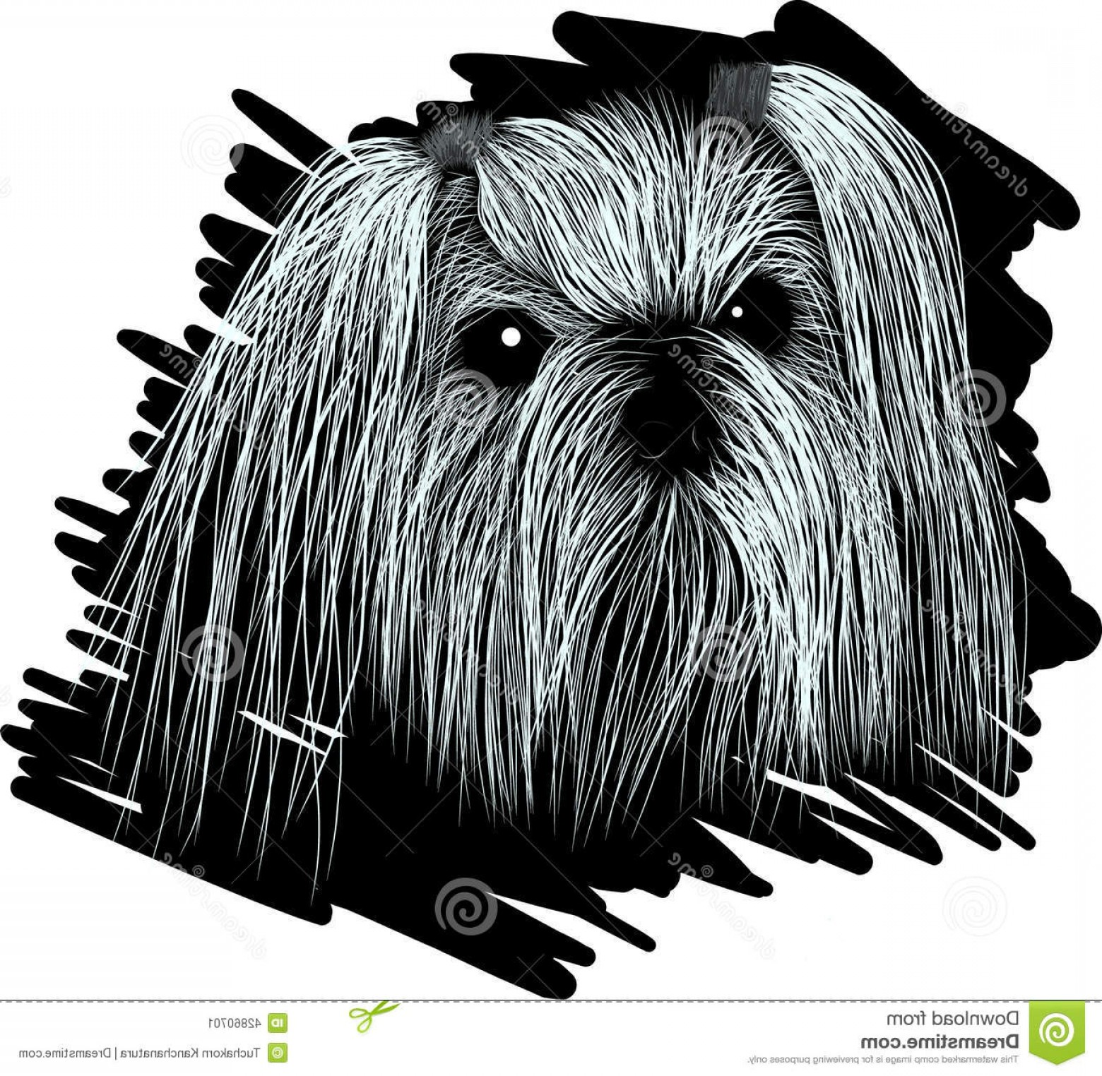 Shih Tzu Clipart-Vector: Stock Illustration Portrait Dog Shih Tzu Sketch Chinese Breed Image