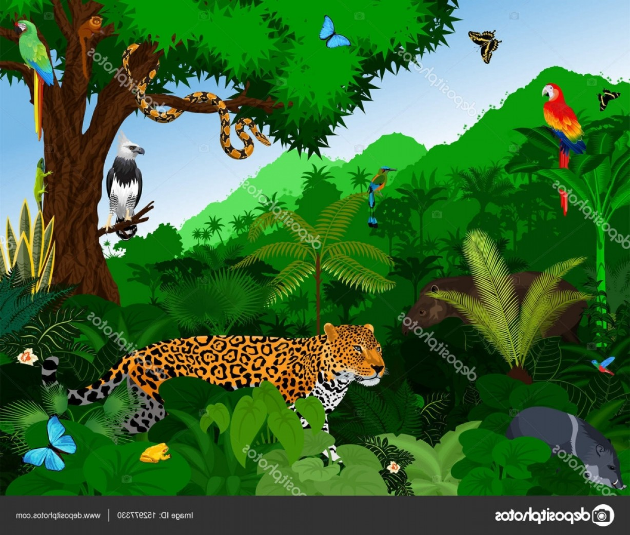 Vector Rainforest Anaconda: Stock Illustration Rainforest With Animals Vector Illustration