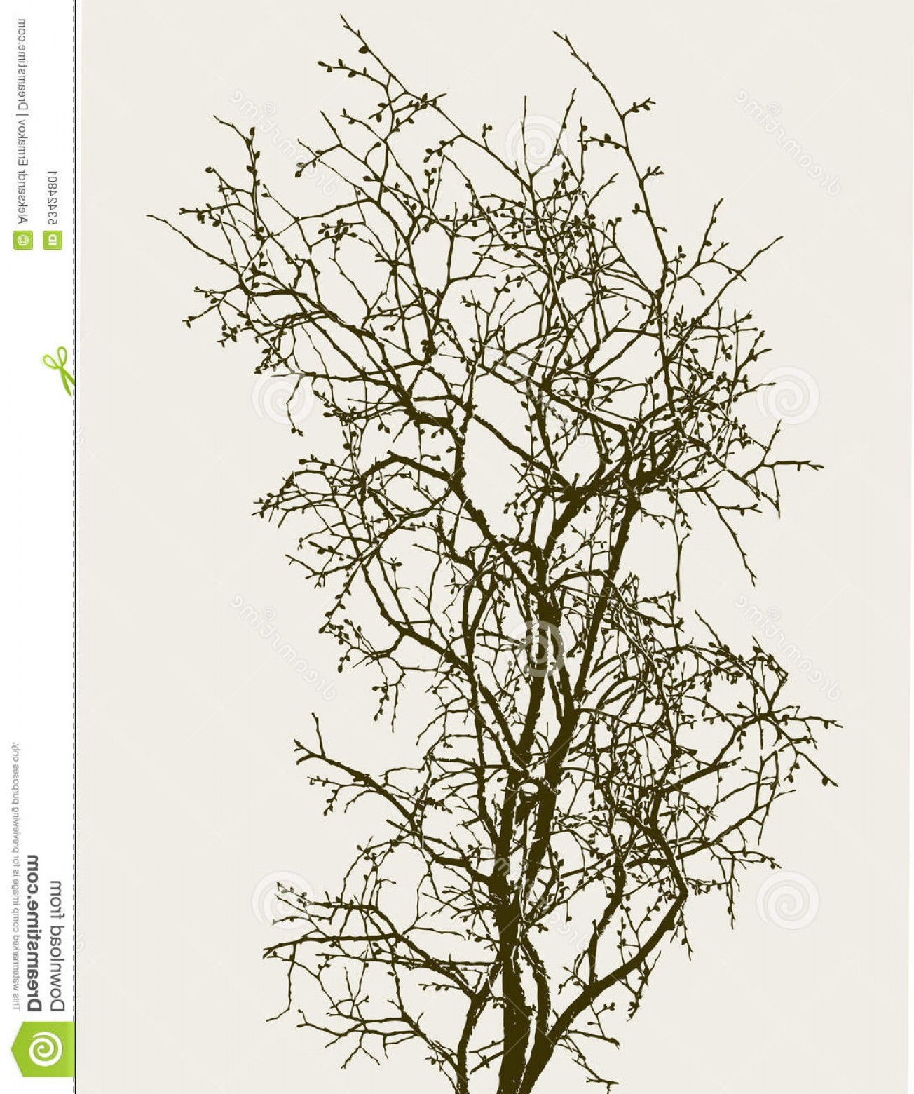 Sapling Vector Tree Silhouette Art: Stock Illustration Sapling Buds Vector Drawing Tree Spring Image