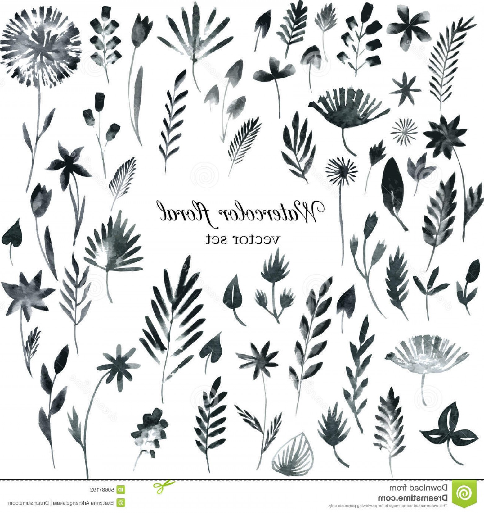 Flower Elements Vector: Stock Illustration Set Black Watercolor Floral Elements Vector Monochrome Hand Drawn Image