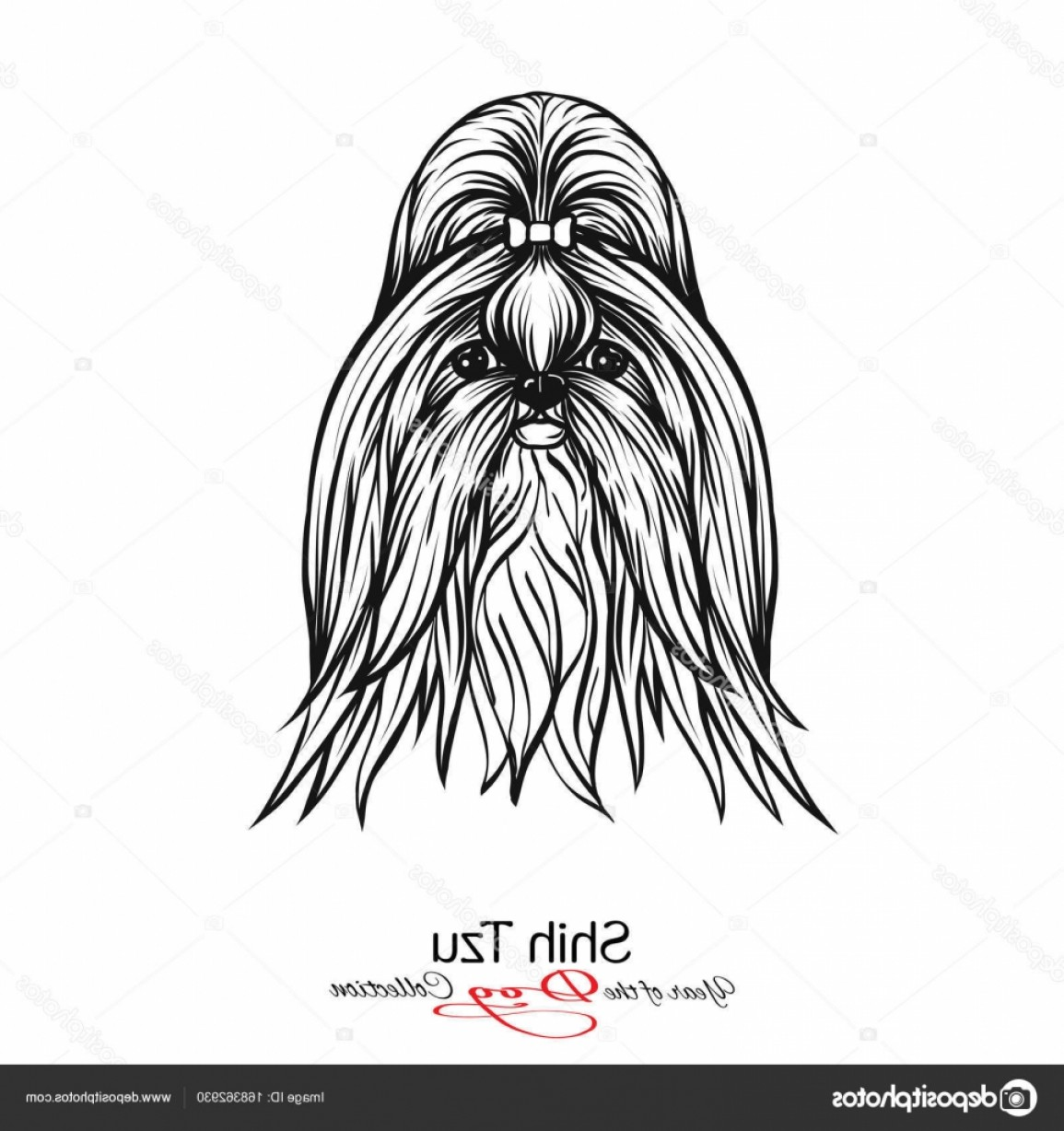 Shih Tzu Vector Siluete: Stock Illustration Shih Tzu Black And White