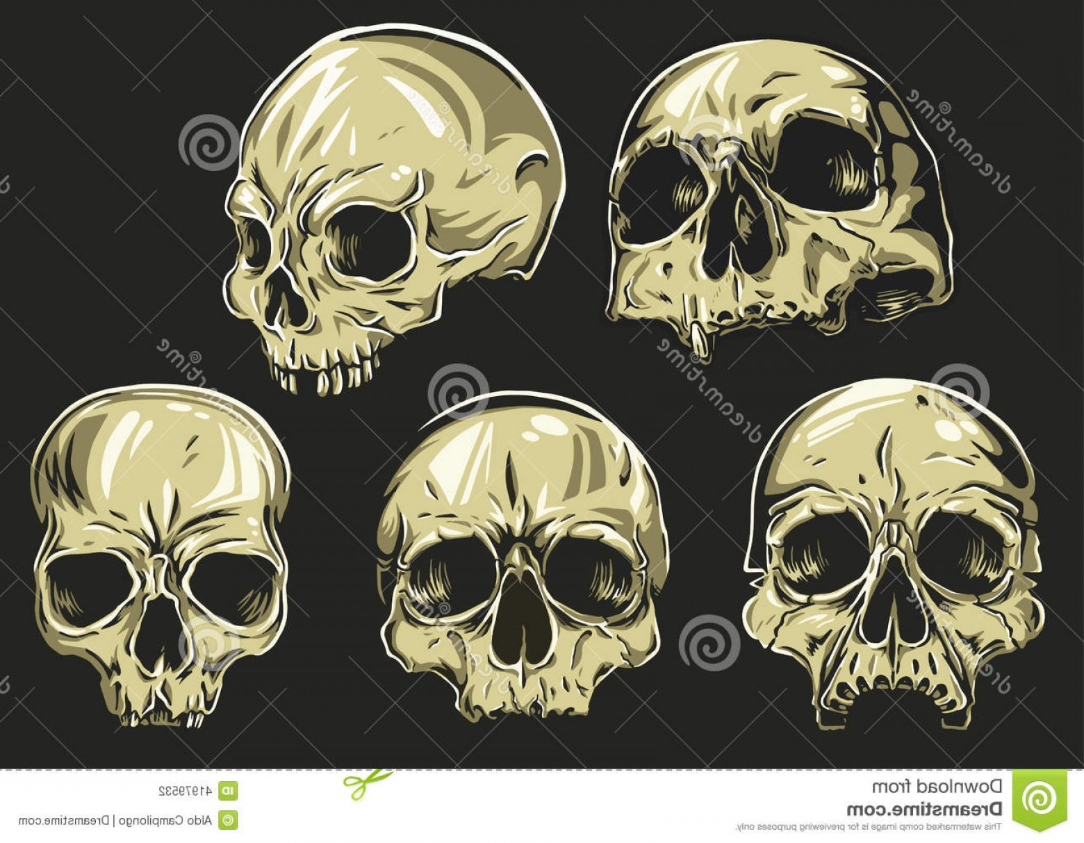 His And Hers Skulls Vector: Stock Illustration Skulls Vector Set To Remove Change Fill Color Just Open Group Skull Illustrator Select Color Path Image