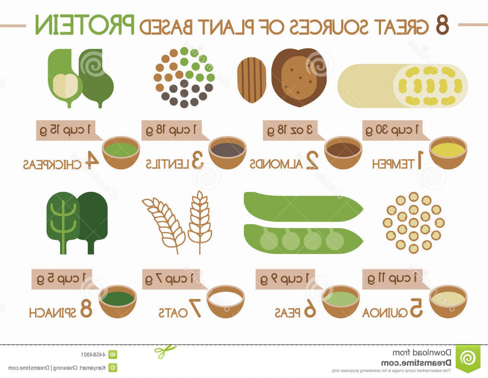 Vector Protein: Stock Illustration Sources Plant Based Protein Illustrator Vector Image