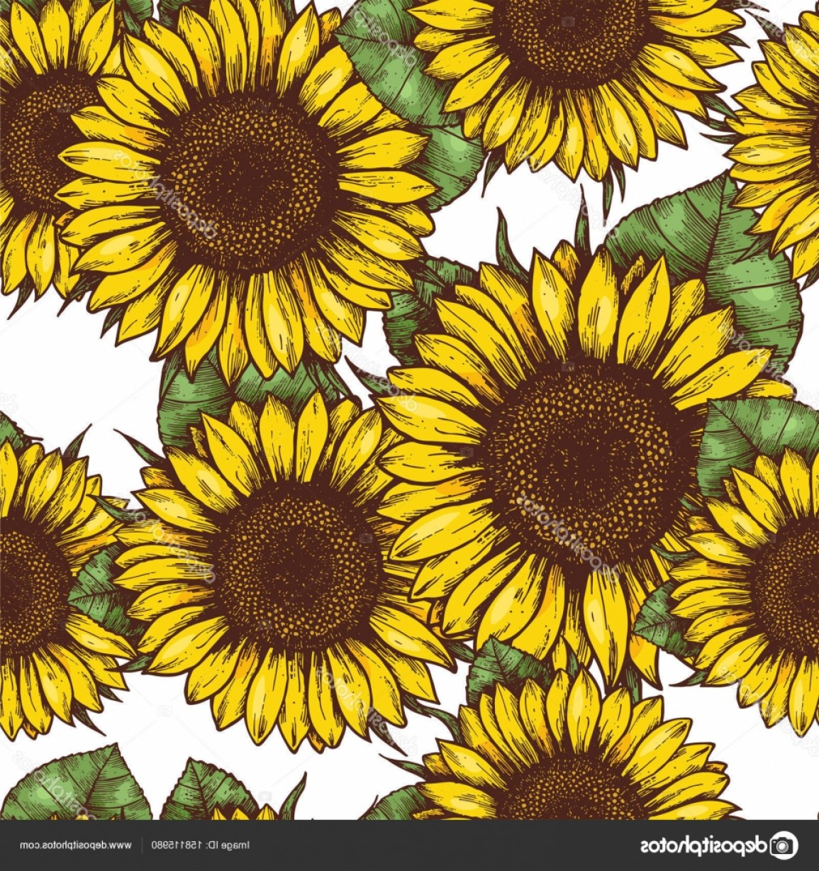 Sunflower Vector Pattern: Stock Illustration Sunflower Seamless Pattern Sunflower Fabric