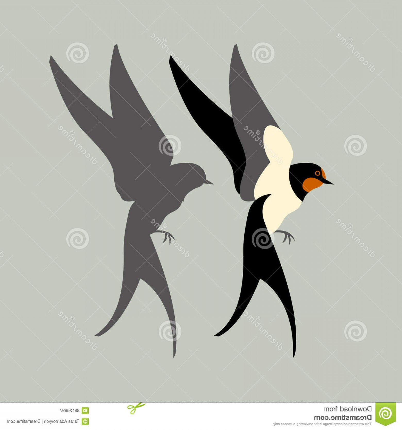 Swallow Vector: Stock Illustration Swallow Vector Illustration Style Flat Set Black Silhouette Image
