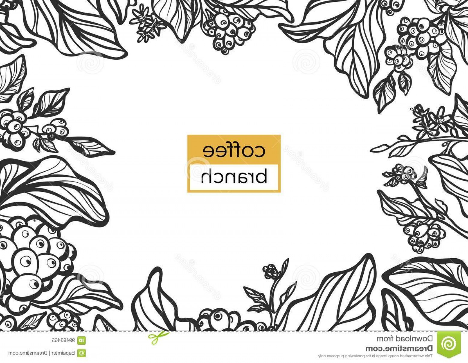 Coffee Tree Vector: Stock Illustration Template Black Branch Coffee Tree Leaves Natural Coffee Beans Template Black Branch Coffee Tree Leaves Image