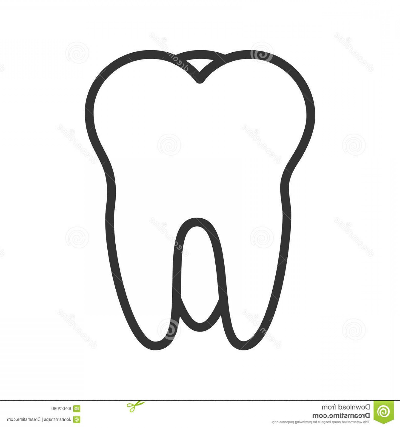 Tooth Outline Vector: Stock Illustration Tooth Linear Icon Thin Line Illustration Vector Isolated Outline Drawing Image