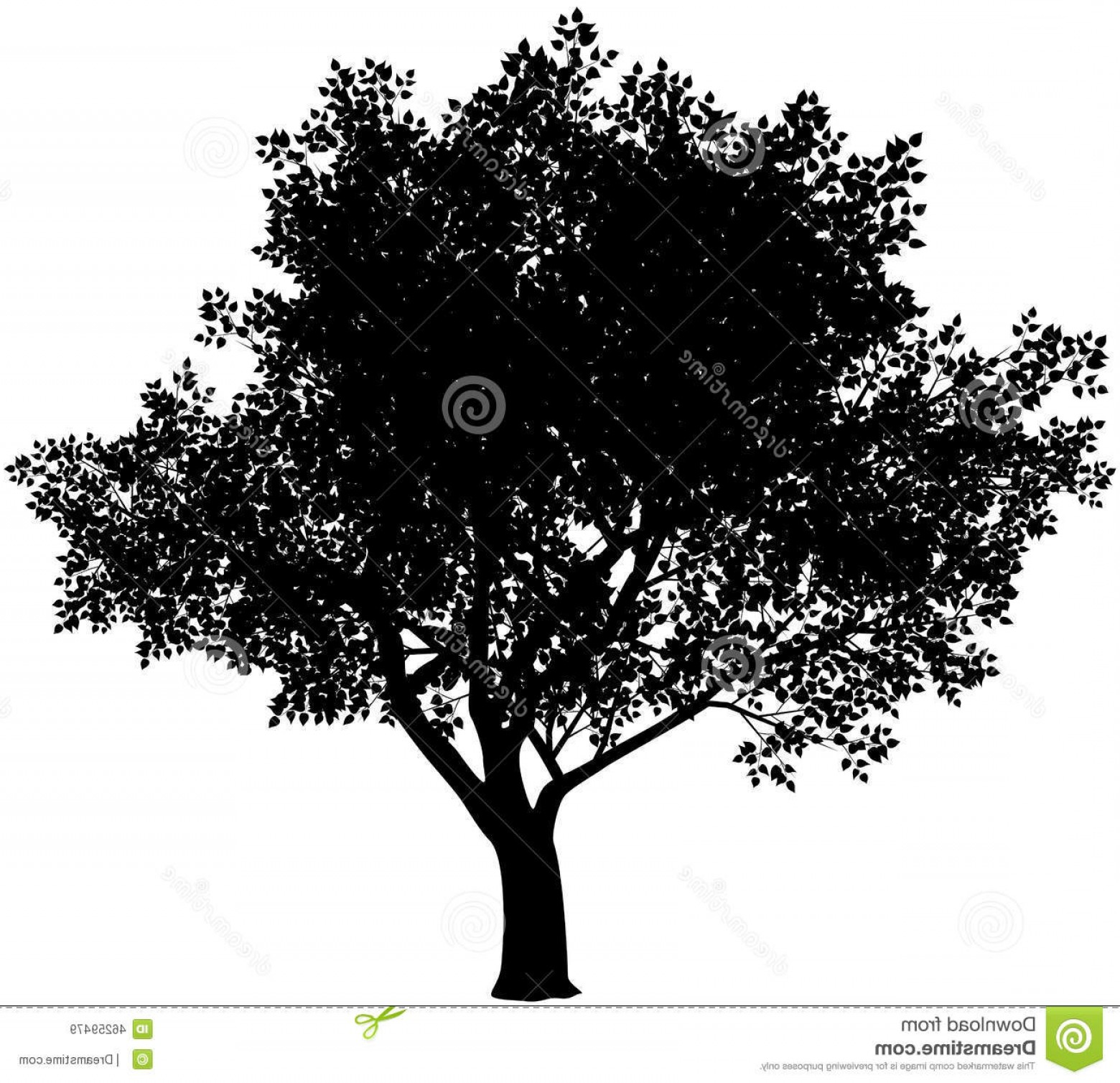 Oak Tree Silhouette Vector Graphics: Stock Illustration Tree Silhouette Vector Black White Eps Gradients Free Image