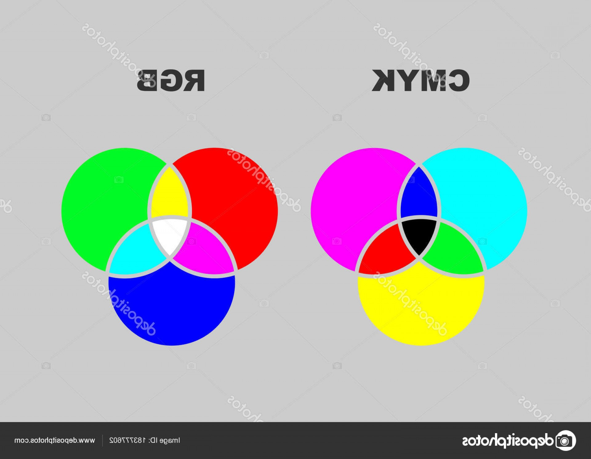 Color CMYK Chart Vector Free: Stock Illustration Vector Chart Explaining Difference Between