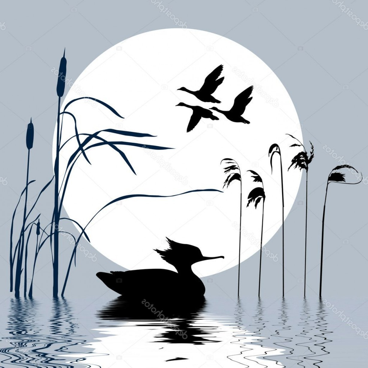 Flying Duck Outline Vector: Stock Illustration Vector Drawing Flying Birds On