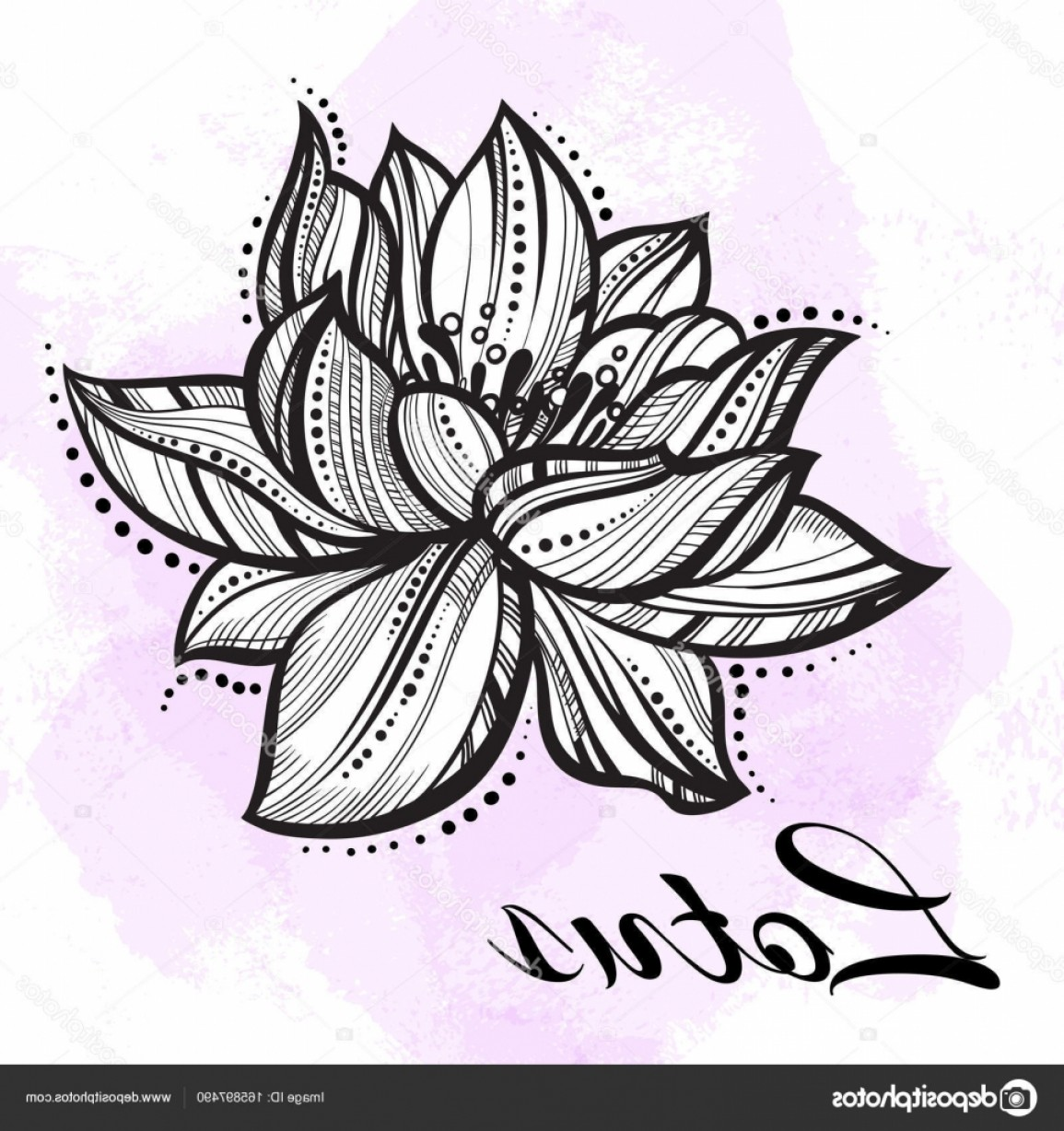 Detailed Tattoo Vector Images: Stock Illustration Vector High Detailed Beautiful Lotus