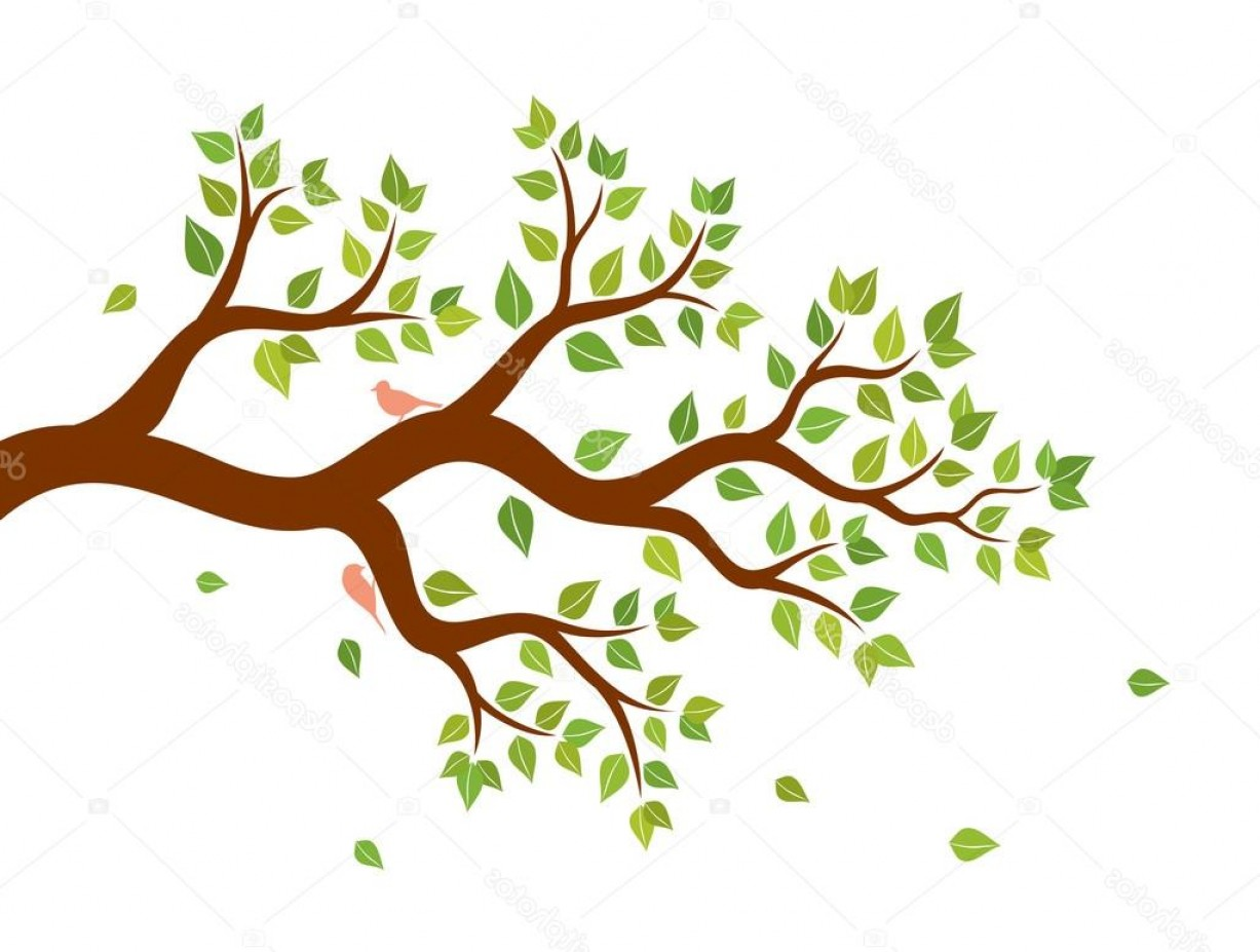 Tree Branch Vector Background: Stock Illustration Vector Illustration Of Tree Branch