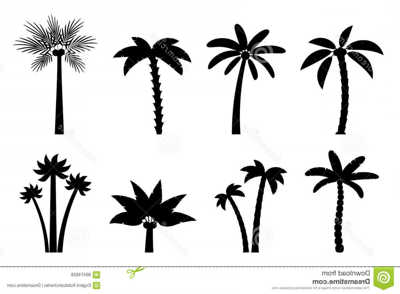 Simple Palm Tree Vector: Stock Illustration Vector Set Simple Palm Trees Flat Cartoon Black Silhouette Palms White Background Image