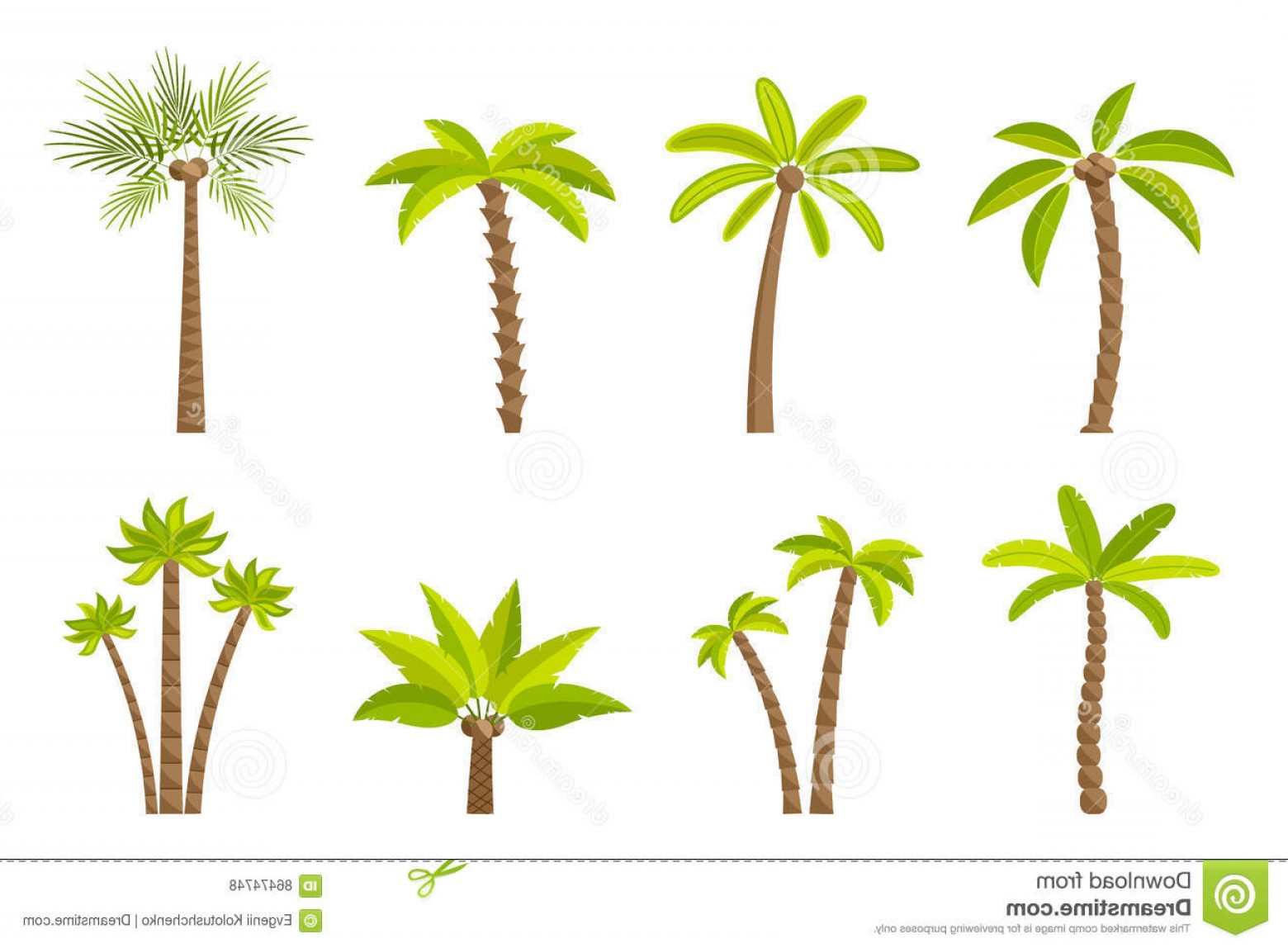 Simple Palm Tree Vector: Stock Illustration Vector Set Simple Palm Trees Flat Cartoon Palms White Background Image
