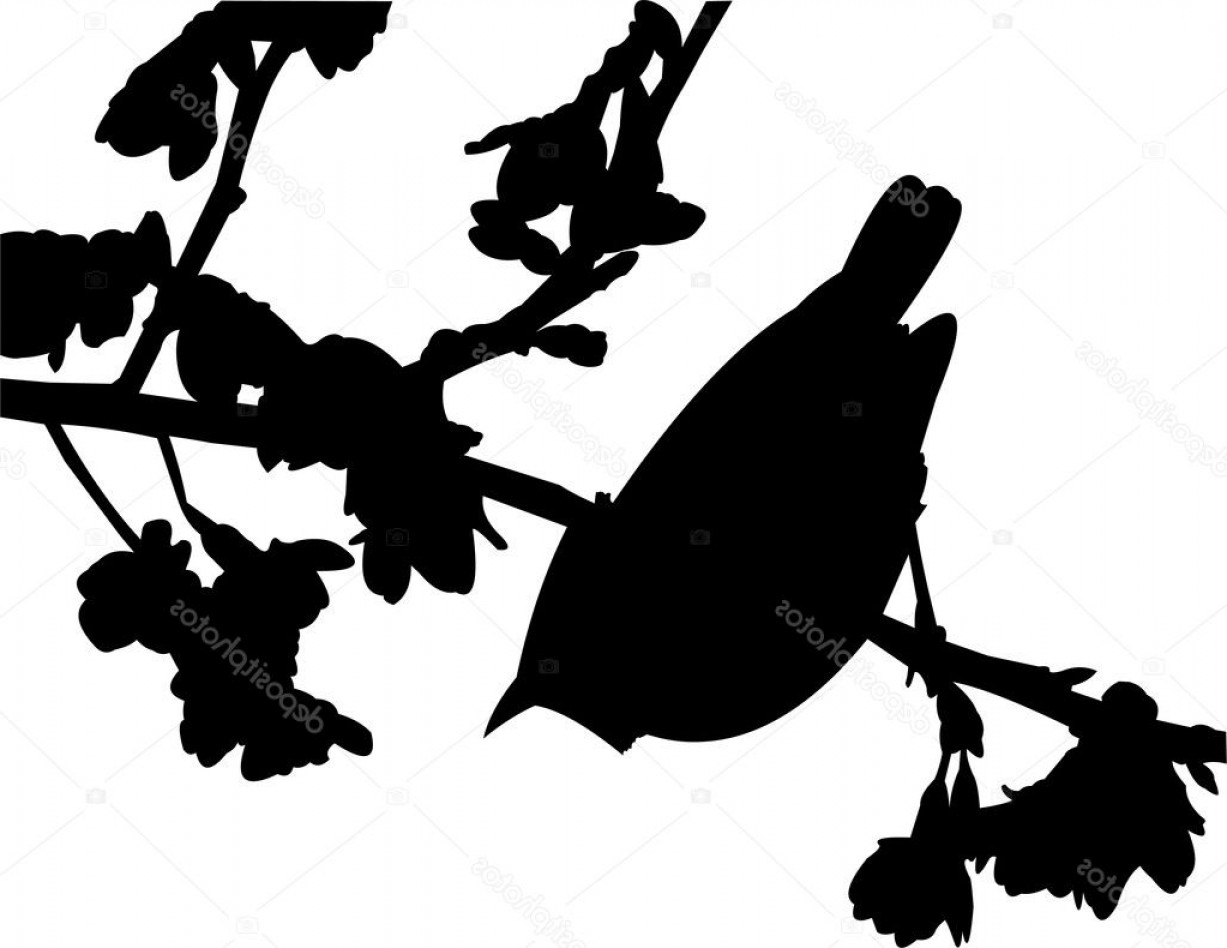 Spring Vector Silhouette: Stock Illustration Vector Silhouette Of The Bird