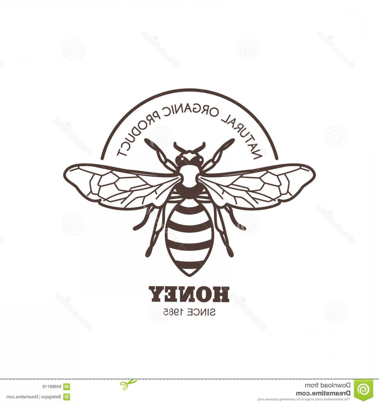 Bee Outline Vector: Stock Illustration Vector Vintage Honey Label Design Outline Honeybee Logo Emblem Linear Bee White Background Concept Organic Image