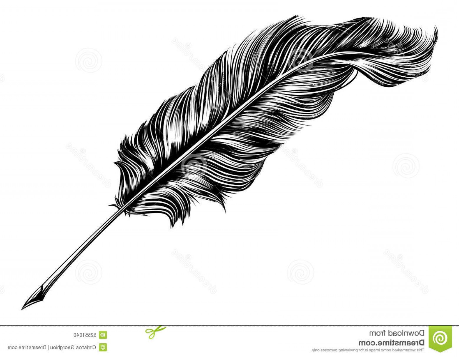 Quill Pen Vector: Stock Illustration Vintage Feather Quill Pen Illustration Original Woodblock Style Image