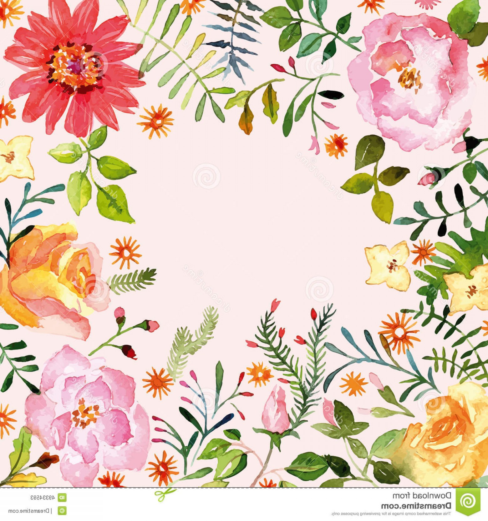 Stock Illustration Watercolor Floral Ornament Spring Flowers