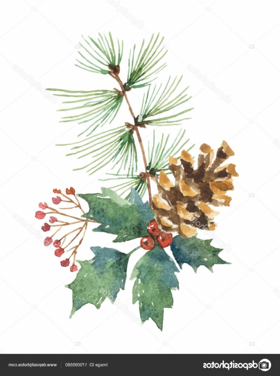 Pine Leaf Vector: Stock Illustration Watercolor Vector Christmas Bouquet With