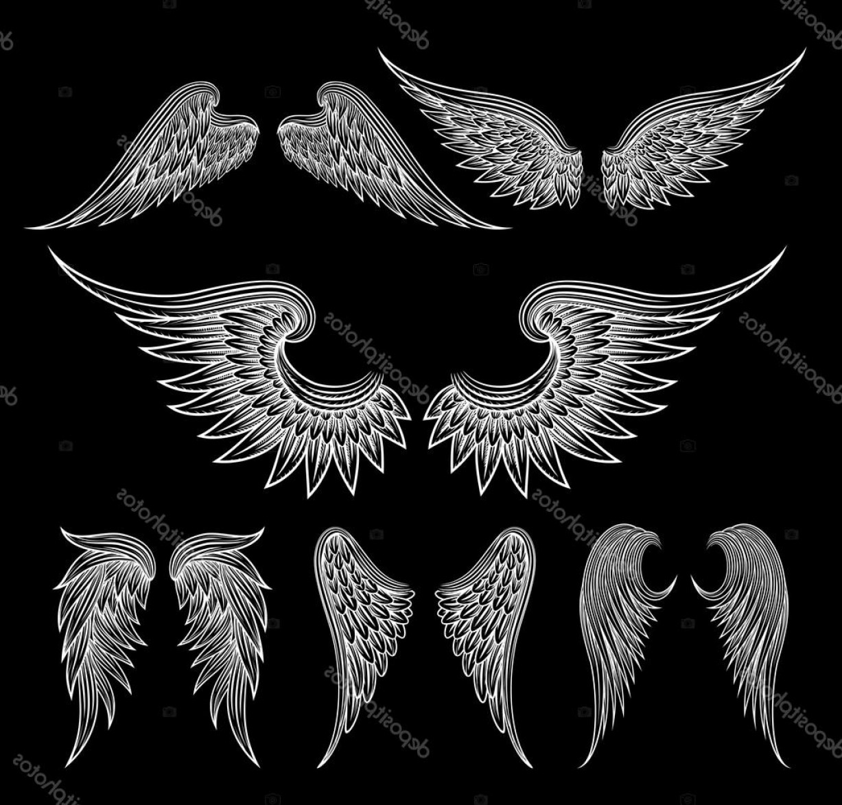 Vector Hi Res Black And White Wing: Stock Illustration White Wings On Black Background