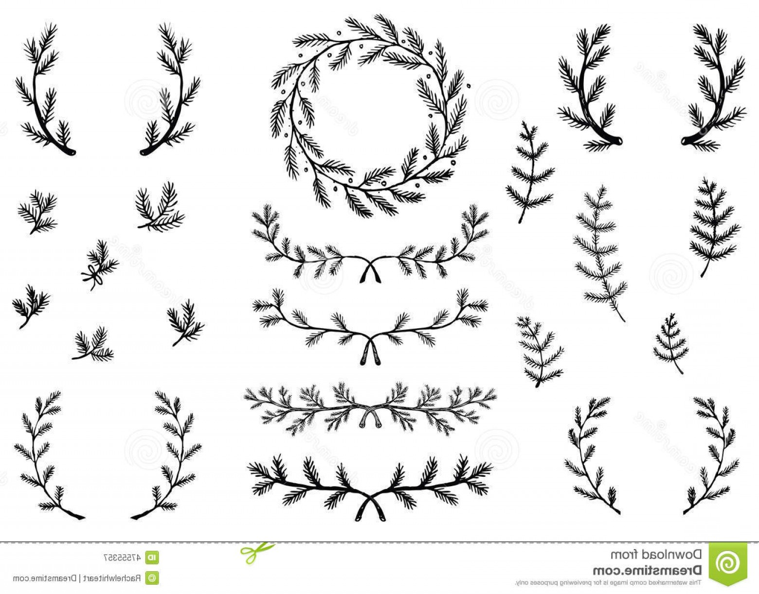 Hand Drawn Laurel Vector: Stock Illustration Winter Laurels Collection Hand Drawn Pine Branch Illustrations Accents Wreath Image