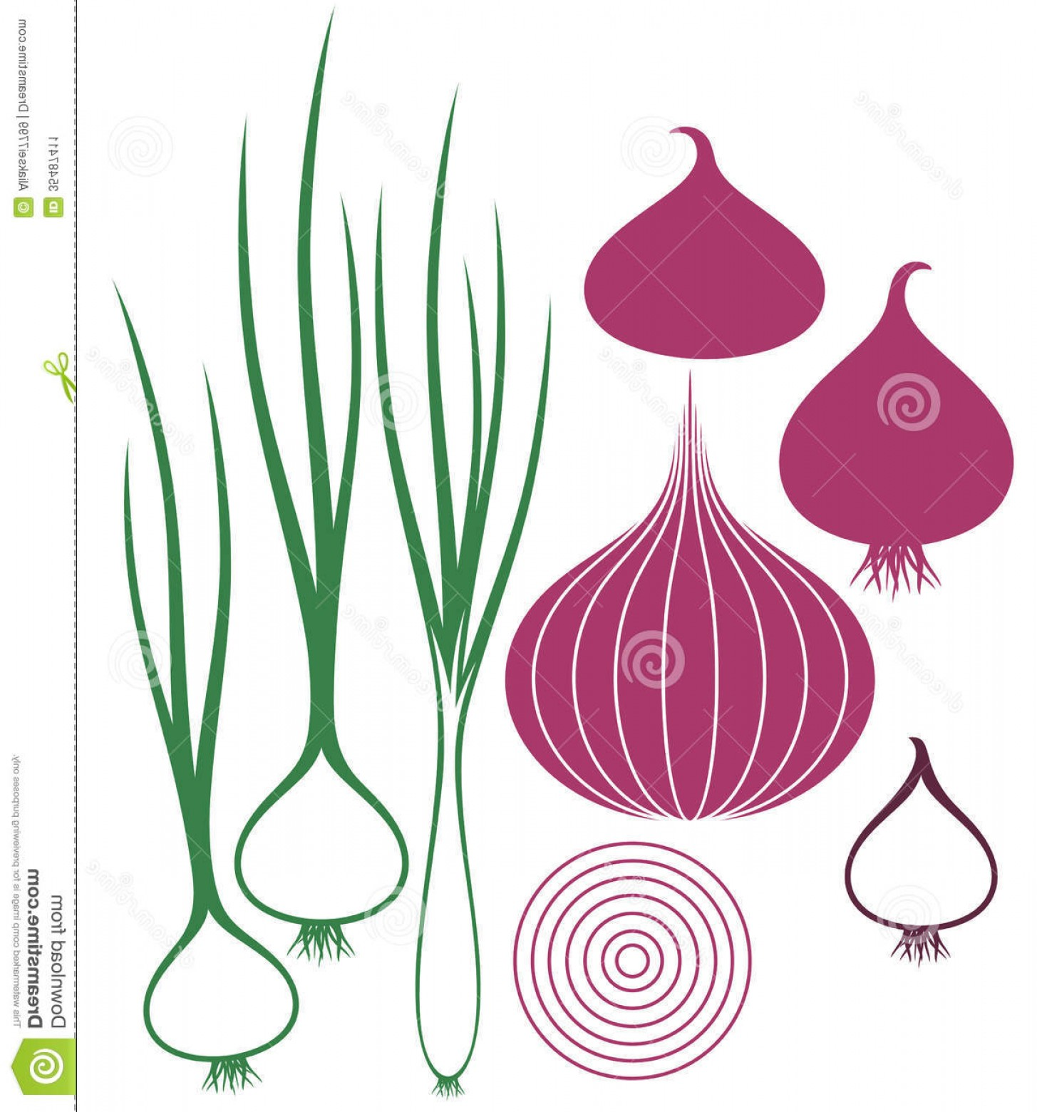 Onion Vector: Stock Image Onion Isolated Objects White Background Vector Illustration Eps Image