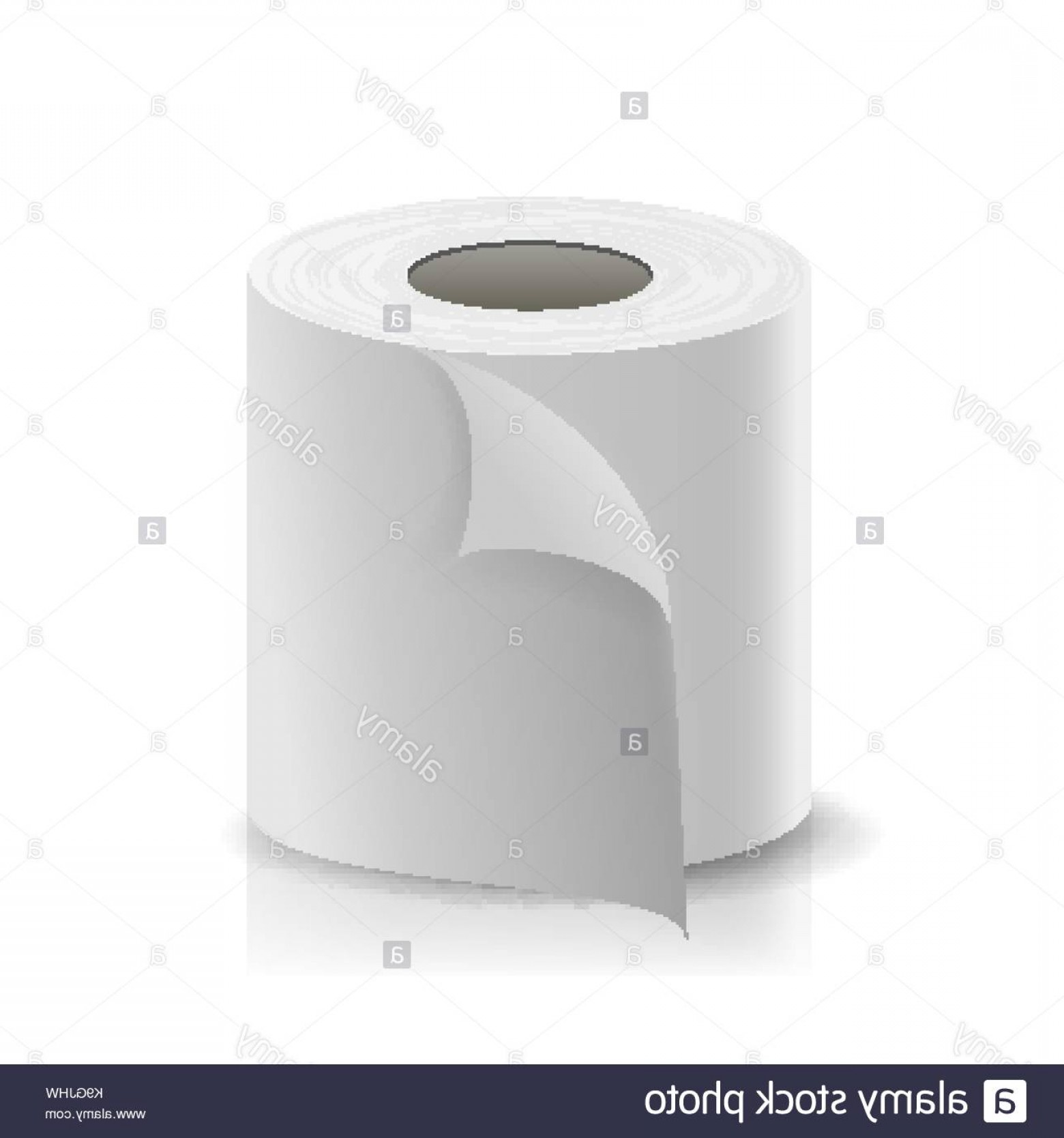 Toilet Paper Vector: Stock Image Realistic Paper Roll Vector Template Blank White Toilet Paper Roll