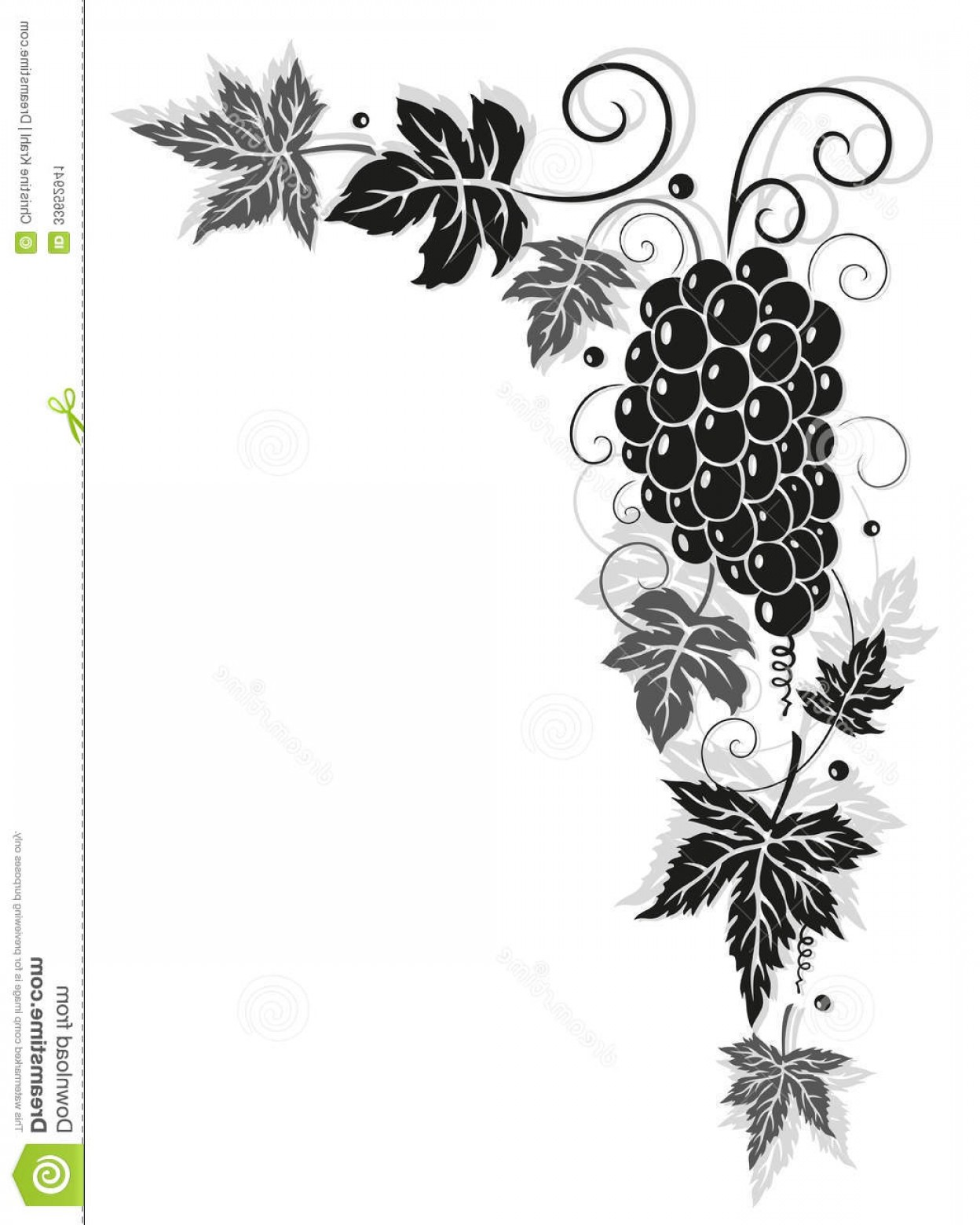 Vector Vine Tree: Stock Image Vine Leaves Autumn Border Grapes Vector Illustration Image
